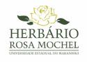 herbario_rosa_mochel.png