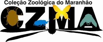 logo_czma.jpeg