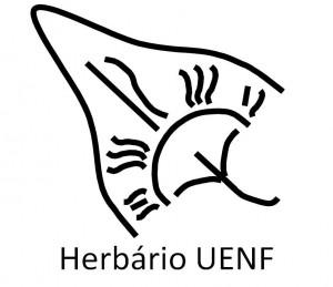 logo_huenf.jpg