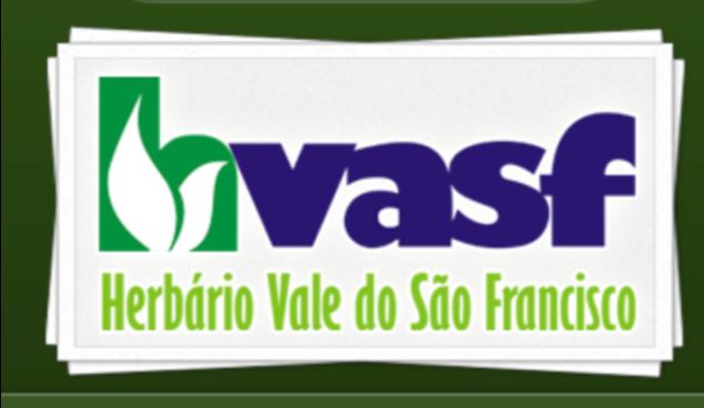 logo_hvasf.png